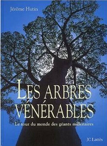arbres vénérables.jpg