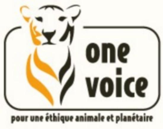 oneVoice.jpg